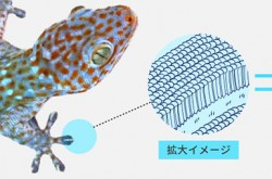 Mitsubishi Materials develops new material with properties of metal and rubber